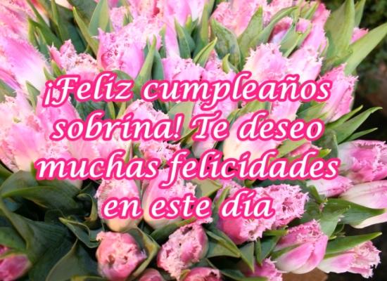 Felicitaciones de cumpleaños para una sobrina | Imágenes y