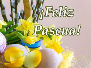 Tarjeta para Pascuas ¡Feliz Pascua!