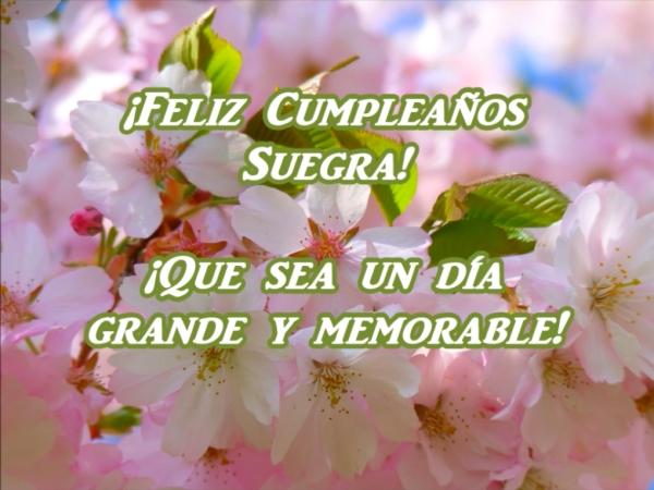 ¡Feliz Cumpleaños Suegra! ¡Que sea un día grande y memorable!