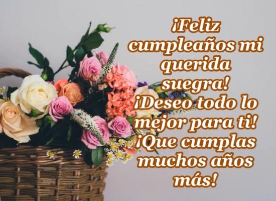 ¡Feliz cumpleaños querida suegra!