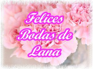 7 Aniversario de bodas - Felices Bodas de Lana!