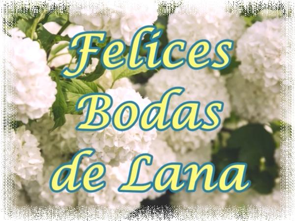 7 Aniversario de bodas - Felices Bodas de Lana