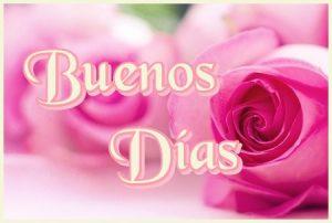 Tarjeta con rosa de Buenos Días para enviar por whatsapp