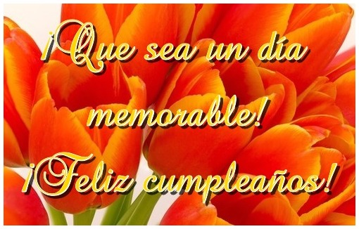 Imagen de Cumpleaños con tulipanes