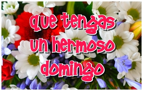 Tarjeta virtual Feliz Domingo para compartir