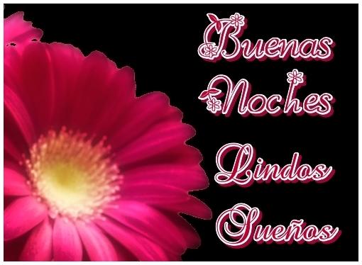 IMAGEN DE BUENAS NOCHES CON FLORES PARA WHATSAPP (10)