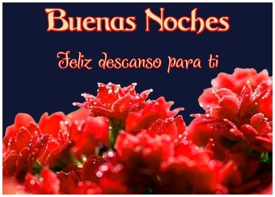 Imágenes de rosas con frases de buenas tardes