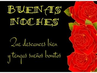 Imágenes de buenas noches con rosas 4