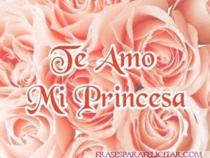Imágenes Te Amo Mi Princesa (13)