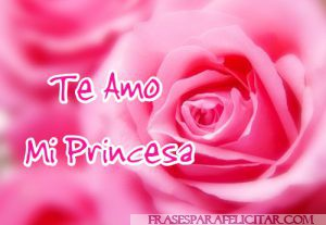 Te Amo Imágenes Bonitas Con Rosas (15)