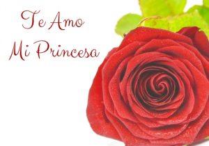Te Amo Imágenes con Rosas (9)
