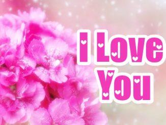Te Amo Imágenes en Inglés con Flores (2)