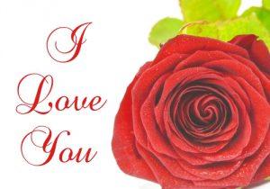 Te Amo Imágenes en Inglés con Flores (4)